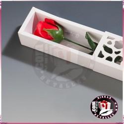 Rosas de Sabão com Caixa