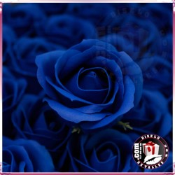 Rosas de Sabão 50 unidades Azul